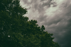 Calm before the storm (Sarah Rausch) Tags: sony 50mm 18 storm 25 mood still