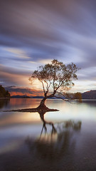 One Calm Tree. (timexzy123) Tags: calm lakewanaka longexposure mirror mountains newzealand tree wanaka 100pure 99 classic clouds epic lake lonetree nz oneofakind rjdlandscapes southisland