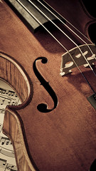 Violin (timexzy123) Tags: music musicalinstrument violin stringins musiknoten edel expensive geige holz musikinstrument product rar stradivari antique black bow classicalstyle equipment investment musicstyle musicalequipment musicalinstrumentstring musicalnote sheetmusic stringinstrument studioshot traditionalculture