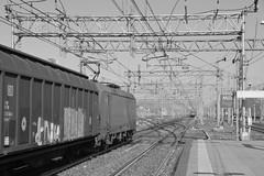 rogoredo marzo 2019 #20 (train_spotting) Tags: milanorogoredo lenord ferrovienordmilano nordcargo dbcargoitaliasrl vectrondc vectron e1910203inc siemens nikond7100