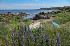 Bornholm 2019 (ursus68) Tags: bornholm dänemark europa insel ostsee outdoor urlaub