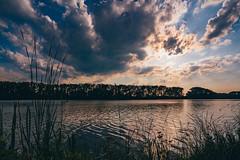 Turyňský rybník. (Robert Hájek) Tags: pond landscape nature cloud sun sunset sonya7iii sony voigtlander czphoto czech czechrepublic