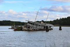 Boat (Irmzaq photography) Tags: sky lake abandoned broken nature water forest photography boat ship shipwreck wreck naturephotography abandonedphotography forgotten