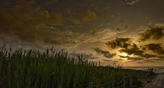 Camino a la playa (Fotgrafo-robby25) Tags: alicante amanecer costablanca dunas marmediterráneo nubes rocas sendasysenderos sonyilce7rm3