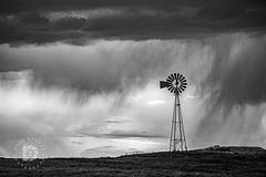 """Rain On The Plains"" - #527 (DBruner240) Tags: nd north dakota rain storm clouds windmill plains landscape weather black white bw windmills"