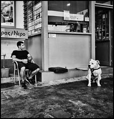thoughtful dog (Lukas_R.) Tags: fuji fujifilm xt30 fujinon xf16mm f28 dog people street travel europ bw