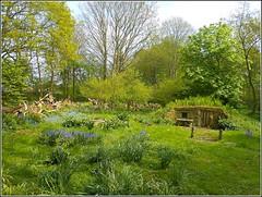 Woodland Retreat .. (** Janets Photos **) Tags: uk woodlands retreats natureviews countryside