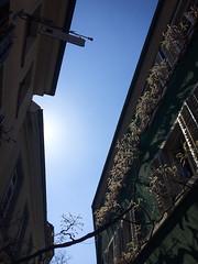 Freiburg i.B. (Daniel Philipona) Tags: freiburg breisgau iphone gegenlicht