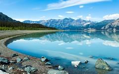 Nature (55) (timexzy123) Tags: bluereflection canada canadianmountain canadianmountains greentrees lake landscape mountains nature reflection yukon