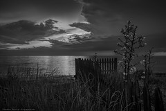 After the Storm (Thomas Pohlig) Tags: sunset seashore seascape flowers water landscape clouds jersey jerseyshore capemay blackandwhite blackandwhitephotography monochrome mono light