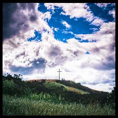 St. Mary's College Cross Path (Graham Gibson) Tags: hasselblad 503cx 500 series v system film medium format 120 6x6 fujifilm fujichrome fuji rvp velvia 50 expired