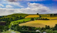 Scotland (Splatito8127) Tags: train landscape beautiful uk scotland travel