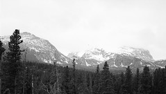 Rocky Mountain National Park, view from Bear Lake Road (LarsHolte) Tags: pentax 645 pentax645 645n 6x45 smcpentaxfa 75mm f28 120 film 120film analog analogue rollei retro 80s 80iso mediumformat blackandwhite classicblackwhite bw monochrome filmforever filmphotography d76 ishootfilm larsholte homeprocessing usa rockymountain nationalpark landscape mountains snow