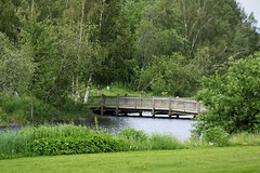 rural tranquility (EllaH52) Tags: water river bridge wooden tree trees forest wood shrubbery grass flowers green nature summer landscape