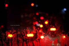 Fuego en la humedad (Leyla Nasar Fotografías) Tags: lights light night luces noche street calle city ciudad urban urbano urbex art arte artistic artistico cars autos fotografia photography imagen image images imagenes