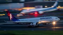 20190616 HND N375HA (dora9092) Tags: ハワイアン航空 hnd 羽田空港 a330200 tokyointernationalairport hawaiianairlines panning 流し撮り airbusa330243 hanedaairport 東京国際空港 rjtt