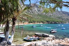 Samos Mourtia (Docaron) Tags: grèce greece ελλάδα samos σάμοσ mourtia μουρτιά dominiquecaron plage beach παραλία greekisland îlegrecque