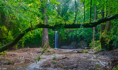 la rierada (salo75) Tags: agua paisaje landscape d700 cascada barcelona arboles catalunya 1635f4vr baixllobregat nikon molinsderey provinciadebarcelona españa