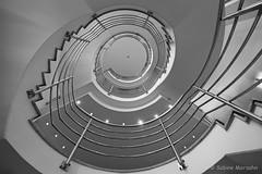 Spotlights (Sockenhummel) Tags: modern treppe monochrom treppenhaus schwarzweis schlicht berlin architecture fuji steps stairwell staircase architektur railing rund spiralstaircase strairs spirale rehab stufen klinik escaliers geländer wendeltreppe reha handlauf xt10