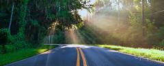 Intersection (Thüncher Photography) Tags: fujifilm gfx50s mediumformat scenic landscape sunlight reflections sunray saintaugustine florida northeastflorida fineartphotography stjohnscounty