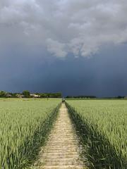 The storm is ahead of us (filipvan) Tags: dilbeek flemishbrabant belgium