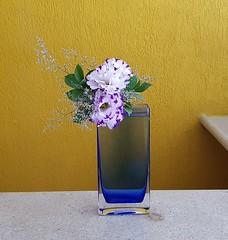 Lysianthus (Ligia Miranda) Tags: ikebana transparência lysianthus guendaifu moderno cristal cáspia ruscus transparency