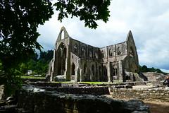 Tintern Abbey (jaabeeee) Tags: tinternabbey abbey ruins