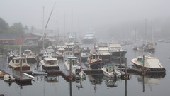 Foggy Day (johnarey) Tags: fog docks wayfarer sallyw harbor wayfarermarine camden maine boats waterfront