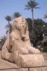 Memphis (claudia.schillinger) Tags: egypt memphis alabaster sphinx