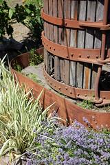 Old Barrel (JB by the Sea) Tags: glenellen sonoma sonomacounty california winecountry sonomavalley june2019 winery vineyard valleyofthemoonwineryatmadroneestate valleyofthemoon madroneestate