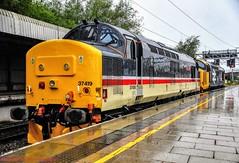 37419 @ Stafford (A J transport) Tags: class37 diesel 37419 locomotive drs railway trains mainline wcml england