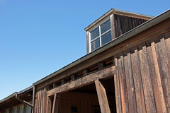 Wooden Building (JB by the Sea) Tags: glenellen sonoma sonomacounty california winecountry sonomavalley june2019 winery vineyard valleyofthemoonwineryatmadroneestate valleyofthemoon madroneestate