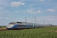 TGV Réseau-Duplex N°606 / Staple (jObiwannn) Tags: train ferroviaire locomotive tgv automotrice sncf