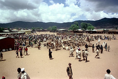78-630 (ndpa / s. lundeen, archivist) Tags: nick dewolf color photograph photographbynickdewolf 1976 film 1970s 35mm 78 africa northernafrica northeastafrica reel78 african ethiopia people ethiopian southernethiopia localpeople market streetmarket village unidentified men unidentifiedvillage women crowd sky clouds hills buildings houses homes trees fence sticks branches wood headcovering stick turban turbans