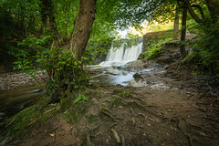 Wepre Park Waterfall (Rob Pitt) Tags: wepre park waterfall north wales connahs quay cymru sony a7rii canon 1740