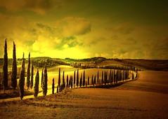 Senza titolo (Enzo Ghignoni) Tags: cipressi strada nuvole colore campi luce asciano tuscany italy panorama case erba atmosfera