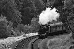 cathex 8420 (m.c.g.owen) Tags: iz24 cathedrals express steam dreams locomotive uk avoncliff bristol london avon valley june 20th 2019 black five 5 lms br 44871 wiltshire british railways stainer standard