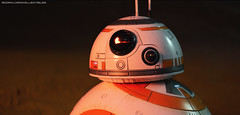 Hot Toys The Last Jedi BB-8 (dorklordcollectibles) Tags: hottoys actionfigure toy onesixth onesixthscale toyphotography sonya6000 a6000 bb8 theforceawakens thelastjedi starwars