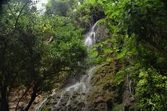 Cascada Sombria (JCMCalle) Tags: zaragoza monasteriodepiedra sombria rock waterfall exposicion larga fall landscape long exposure natural agua cascade cascada jcmcalle paisaje roca