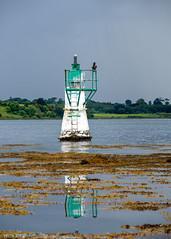 Beacon and cormorant (Donard850) Tags: strangfordlough northernireland countydown beacon cormorant coast coastlie sea seaweed nikon d810