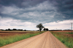 Lonely (stephen.michaels) Tags: michigan dirtroad rural clouds cloudy rain farm farming agriculture tree tokinaaf1931935mmf3545 canoneosrebelt5 gimp