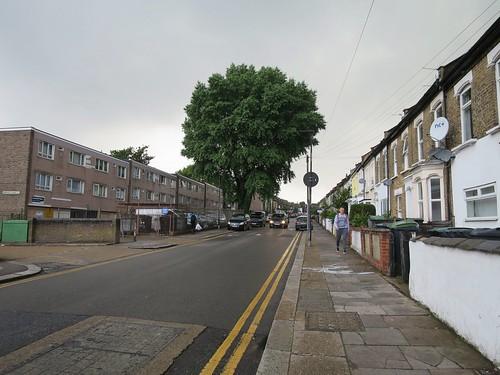 Street Tree - St Loys Road, Tottenham