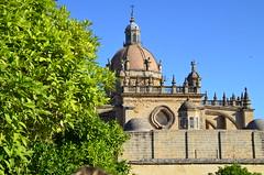 Andalusien 2019 (HemiV8) Tags: jerezdelafrontera flamenco sherry andalusien hofreitschule karthäuser pferde reiten thorstenschlotter