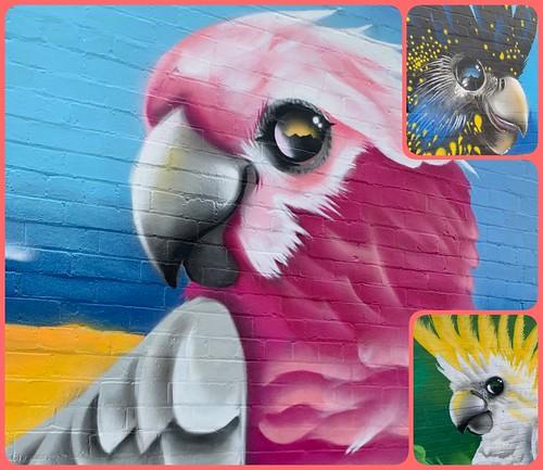 Street Art Mural in Geelong...