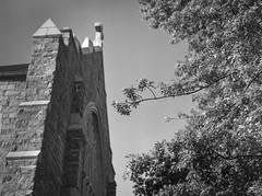 looking up, architectural facade, tree forms, First Congregational Church, Asheville, NC, Mamiya 645 Pro, mamiya sekor 45mm f-2.8, HC-110 developer, 6.18.19 (steve aimone) Tags: lookingup architecture facade stone trees firstcongregationalchurch asheville northcarolina mamiya645pro mamiyasekkor45mmf28 mamiyaprime primelens mediumformat 120 120film film monochrome monochromatic blackandwhite