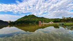 20190615_070047-01 (鹽味九K) Tags: 大湖公園 三星 手機 手機攝影