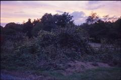 (✞bens▲n) Tags: contax g2 kodak e100g carl zeiss 45mm f2 film slide analogue evening landscape
