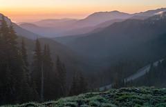 20190602Hurricane-65-HDR (Laura Jacobsen) Tags: hurricaneridge mountains olympicnationalpark sunrise washington