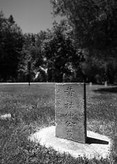Day 582 | The One (JL2.8) Tags: boise idaho unitedstatesofamerica bw blackandwhite cemetery canon 6dmk2 project365 365 photochallenge
