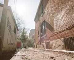 IMG_20190620_190547 (stevemccaffrey) Tags: toronto canada film mamiya kodak